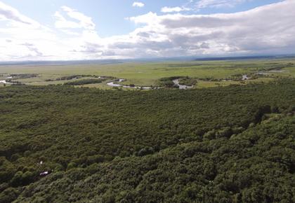 釧路川流域の自然