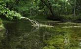 解け水が湧き出る神秘的な光景