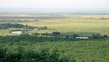 湿原写真1