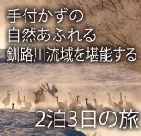 手付かずの自然あふれる釧路川流域を堪能する